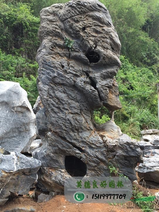 2017年7月   日      石头丑到极致堪入画     (三) - 田园 - 劉振華的田園